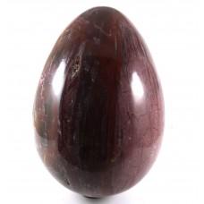 Big Petrified Wood Egg