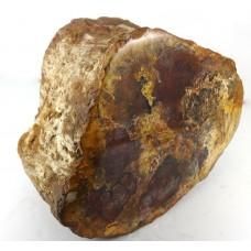 Fossilised Red Brown Wood Log
