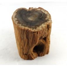 Fossilised Wood Mini Log