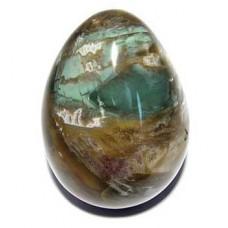 Fossilised Wood Egg