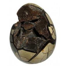 Polished Septaria Egg