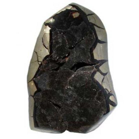 Black Septaria all polished Nodule